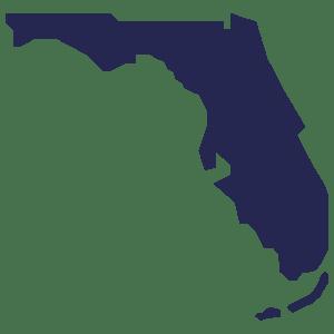 Florida Illustration