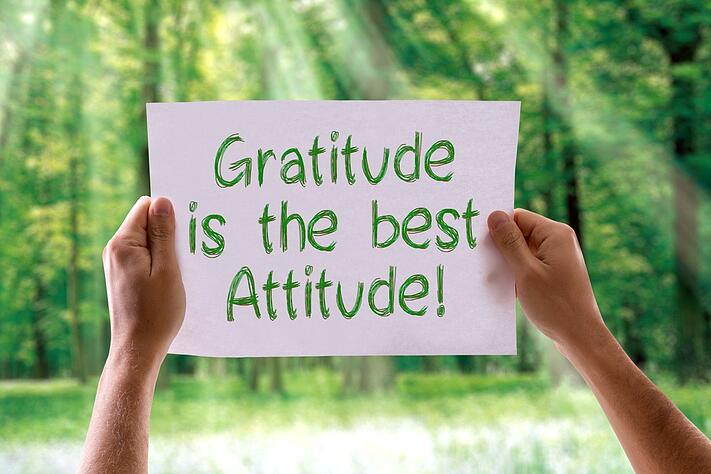 Gratitude is the Best Attitude card with nature background.jpeg